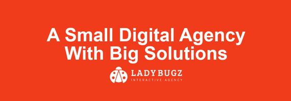 Ladybugz Interactive Agency