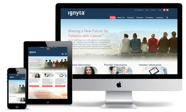 Ignyta Branding and Website Development