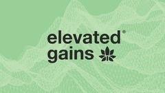 Elevated Gains Visual Identity