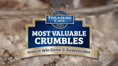 Treasure Cave MVC Case Study