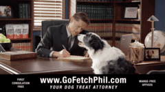 Go Fetch Phil, Dog Treat Attorney
