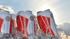King of Beers Brand Extension